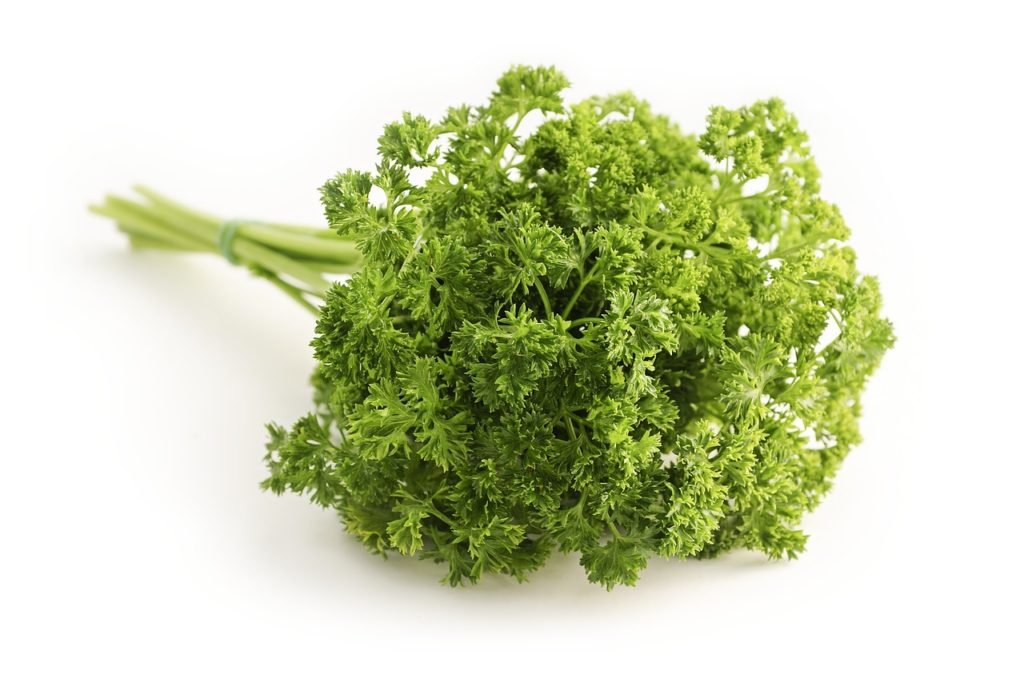 parsley-1665402_1280