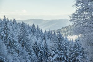 winter-in-the-mountains-1118611_1280